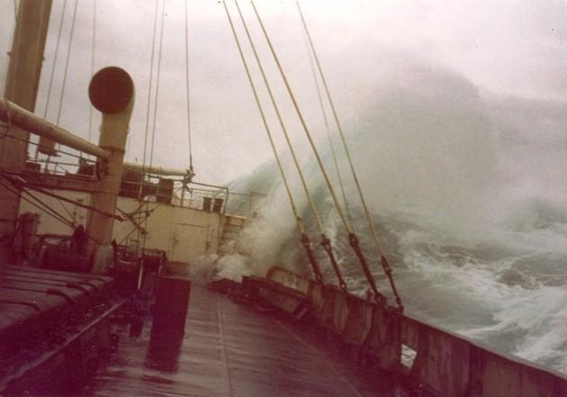 Taifun 2